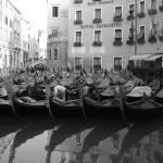 """Gondolas -Venice"" by LindaK"