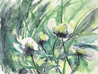 White Water Flowers watercolor