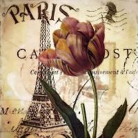 Paris and tulip Art Prints & Posters by Elizabeth Mix