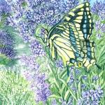 """""""Butterfly on Lavender"""" by ClotheslineArt"""