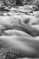 Boulder Creek In Black and White