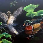 Morning Glory- Wood ducks