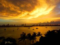 Golden clouds over Miami