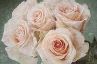 Soft Rose Bouquet Unique