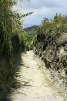Hiking Trail Through a Gully
