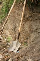 Shovel With Bamboo Handle