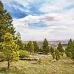 """""""In Utah"""" by PaulCoco"""