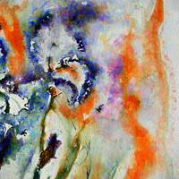 Abstract Flower Passion Iris