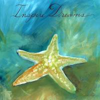 Dreamy Shells: Starfish Inspire Dreams