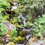 """Waterfall 9465"" by NikkiLeck"