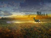 dawn deer on the bog