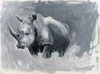 Rhino by Jacey Russell