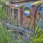 """Old Truck Grill and Weeds"" by SederquistPhotography"