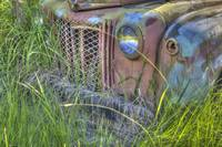 Old Truck Grill and Weeds