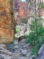 The Narrows of the Virgin River