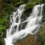 """Water Fall Smokey Mountains (2)"" by jones3006"