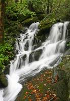 Water Fall Smokey Mountains (2)