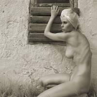The naked at the window