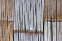 Bamboo Wall in a Shanty