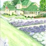 """Purple Ridge Lavender Farm Home"" by ClotheslineArt"