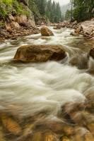 Rocky Mountain Streaming