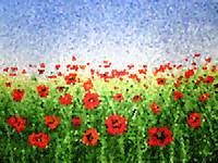 Red Poppy Field Abstract Painting