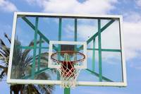 Glass Backboard with a Palm Tree