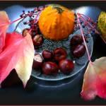 """""""Herbst im regi"""" by eagle1effi"""