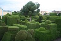 Tulcan Topiaries in Cemetery