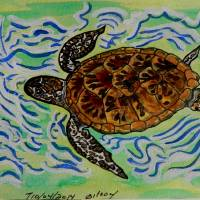 sea turtle  t0037 Art Prints & Posters by whitey gilroy