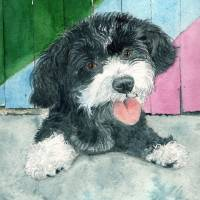 Sammy the Parti Pup Art Prints & Posters by Yvonne Carter