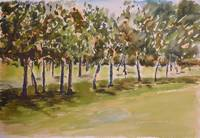 ytrc golf course plein air tree dance