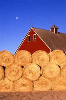 Hay on Farm