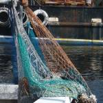 """Nets at Tarpon Springs"" by GypsyChicksPhotography"