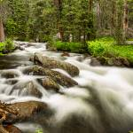 """Roosevelt National Forest Stream"" by lightningman"