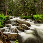 """Roosevelt National Forest Stream Portrait"" by lightningman"