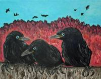 Three Baby Crows