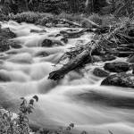 """Flowing Rocky Mountain Stream in Black White"" by lightningman"