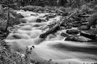 Flowing Rocky Mountain Stream in Black White
