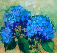 Paint the Town Blue Hydrangeas