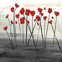 Expressive Floral Red Poppy Field 723