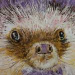 """Hedgehog"" by creese"