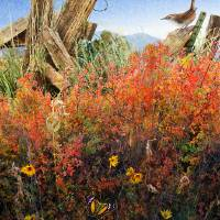 depths of briar with wren Art Prints & Posters by r christopher vest
