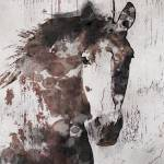 """""""Gorgeous Horse Art"""" by Aneri"""