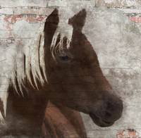 Rustic Brown Horse