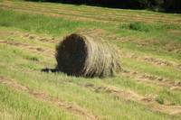 Hay Bale Next to a Road