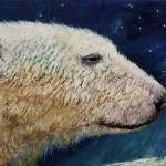 """Polar Bear Stars"" by creese"