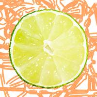Citrus Series - Lime