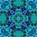 """Coral Fluff Mandala"" by richardhjones"