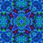 """Coral Star Mandala"" by richardhjones"